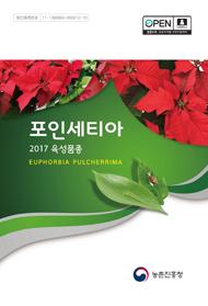 2017 포인세티아 육성품종