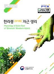 한라봉 [부지화] 자근 생리